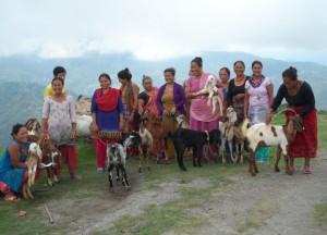Bhattedanda Women's cooperation